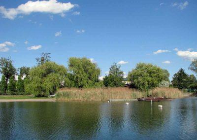 Uferkartierung Alte Donau